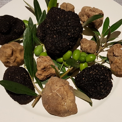 Taste of white truffles in Gatto Nero