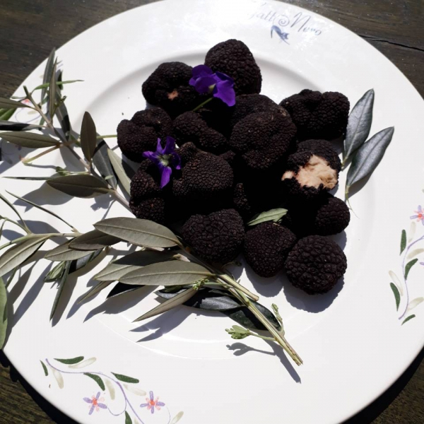 TARTUFO VERO - Workshop for proper preparation of truffles with homemade pasta