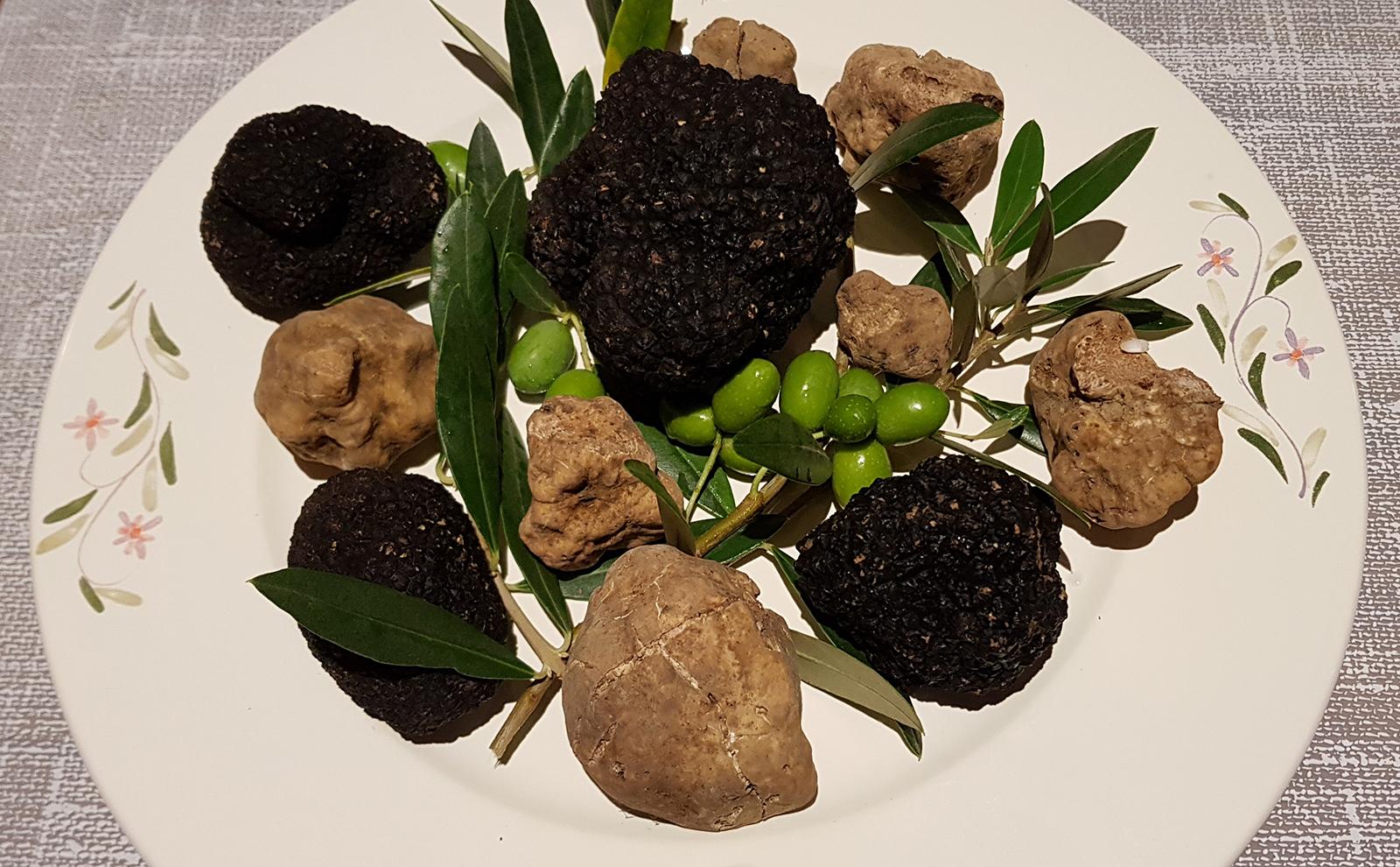 Dani bijelog tartufa (i crnog) u Gatto Neru