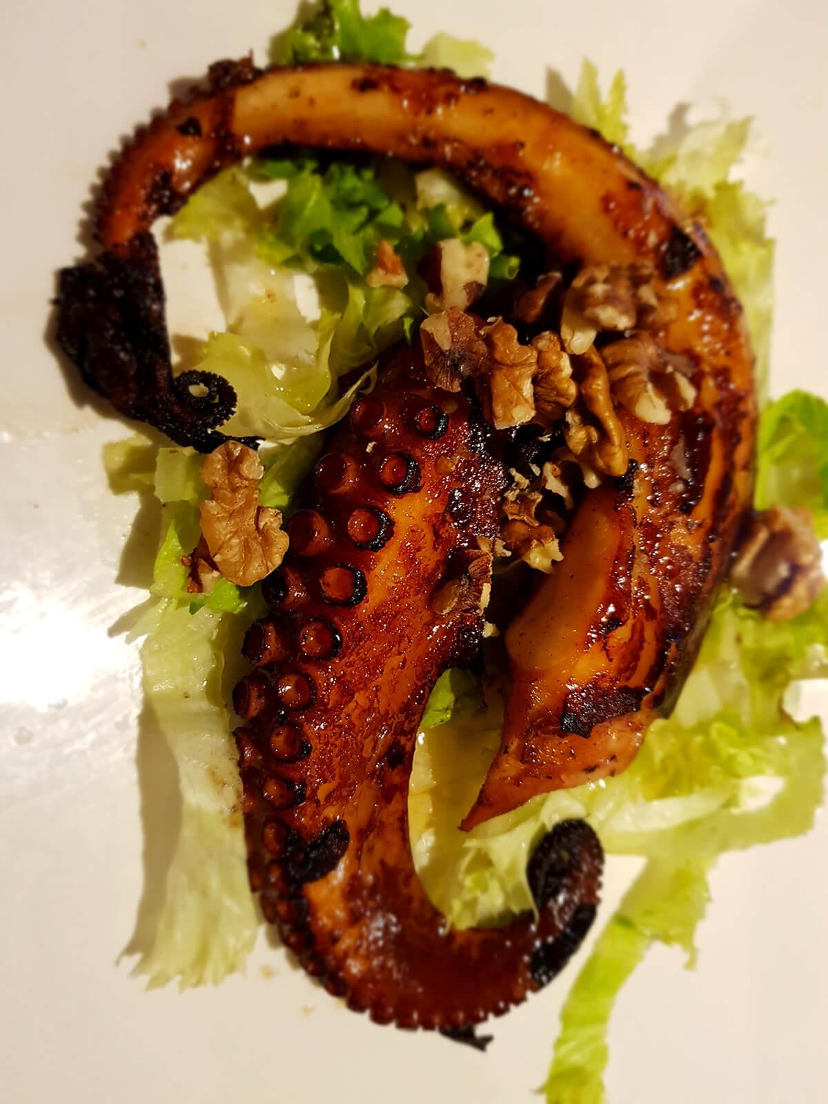 Krakovi hobotnice