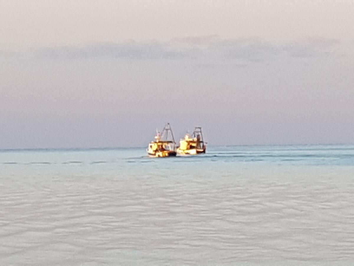 Dani skoljki ribari