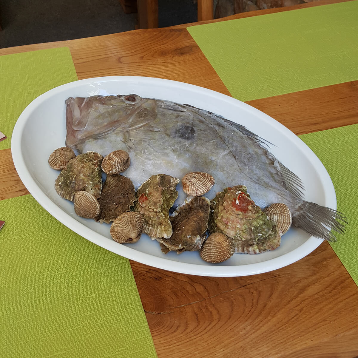 Friška riba